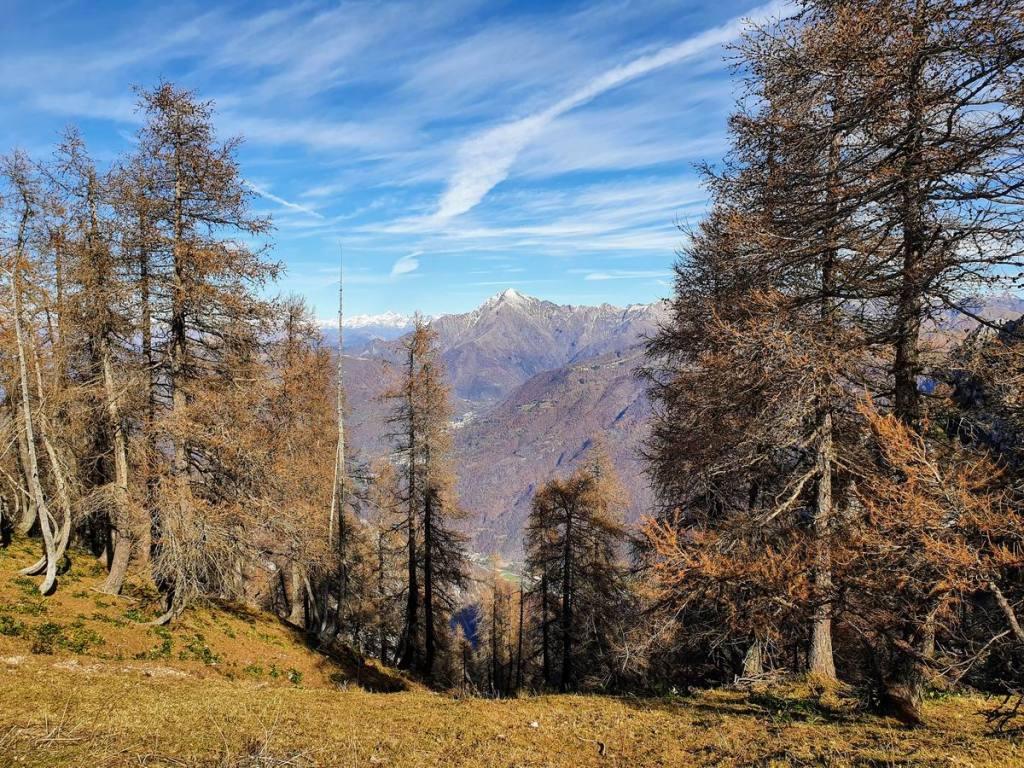 Bocchetta di Piancaformia, 1.803 m