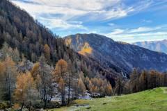 discesa verso l\'Alpe Moncòdeno